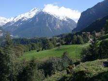 Šveicarija naikina istorinį draudimą