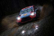 WRC. Monzos ralyje į priekį įsiveržė D. Sordo